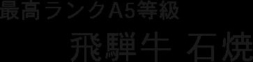 最高A5等級 飛騨牛石焼